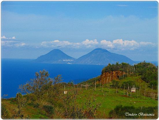 Salina dai Monti Nebrodi (2618 clic)