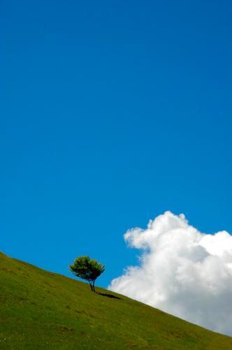 Bianco, verde, azzurro - Civate (2554 clic)