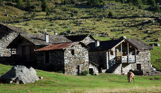Alpe Corte Terza - Gordona (2069 clic)