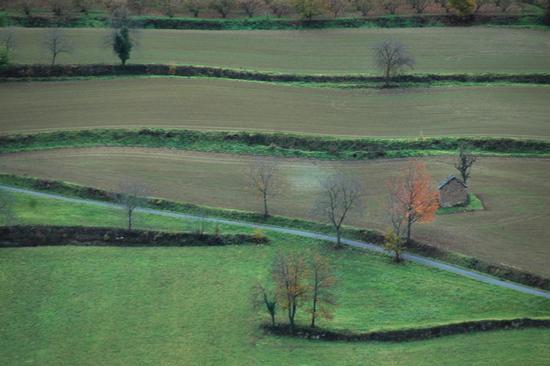 Langhe - Cessole (864 clic)