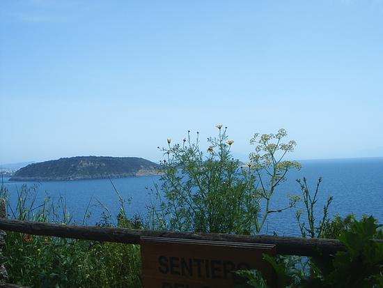 Oltre lo steccato - Ischia (1557 clic)