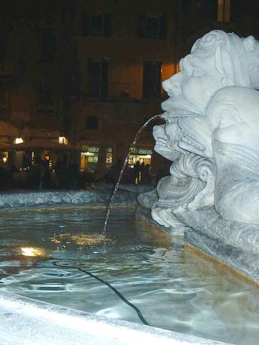 Fontana - Roma (1782 clic)