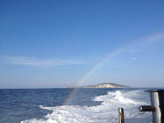 Cavalcando l'arcobaleno - Tremiti (708 clic)