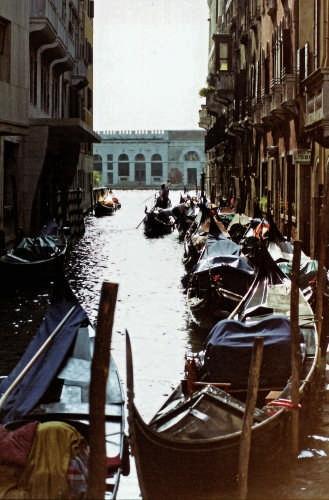 gondole - Venezia (3872 clic)
