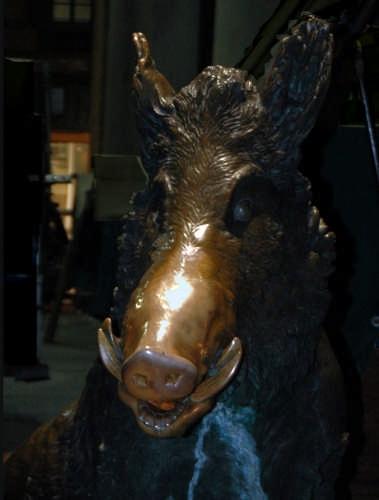 Grugno bronzeo - Firenze (2083 clic)