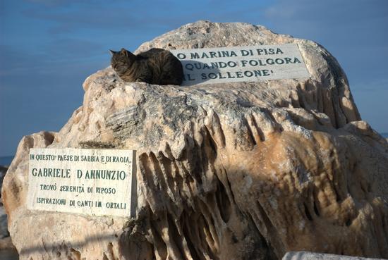 O Marina di Pisa quando folgora il solleone.... (2116 clic)