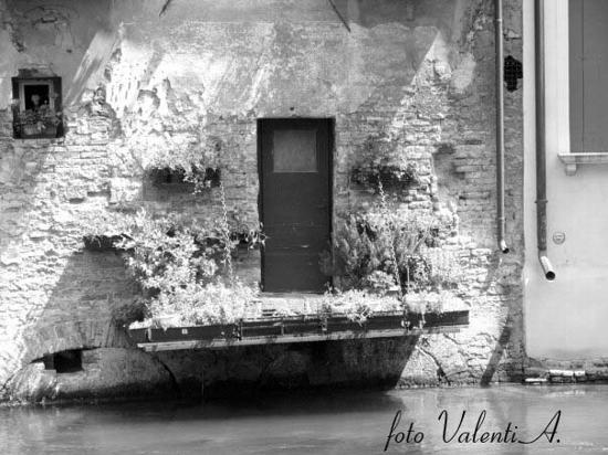 Treviso, Terrazzino sul Cagnan (2036 clic)