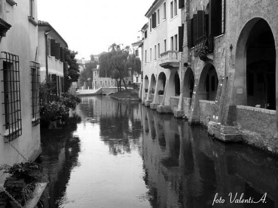Treviso, i Buranelli (2559 clic)