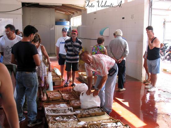 Scoglitti: mercato del pesce  (4265 clic)