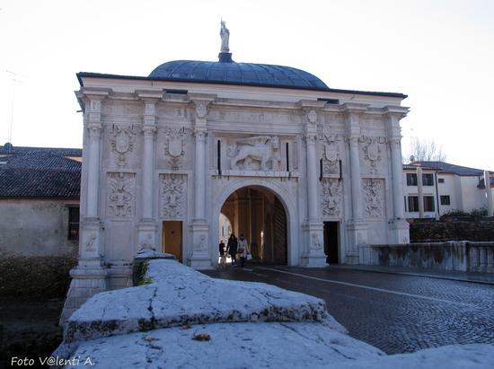 Treviso Porta S Tomaso (1362 clic)