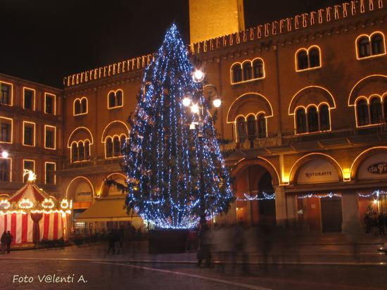 Natale in Piazza dei Signori - Treviso (1679 clic)