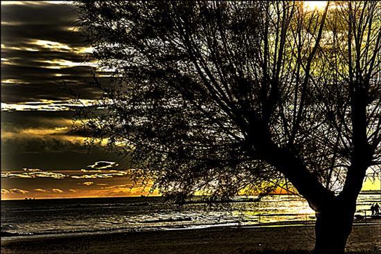 ALBA - Montesilvano marina (2476 clic)