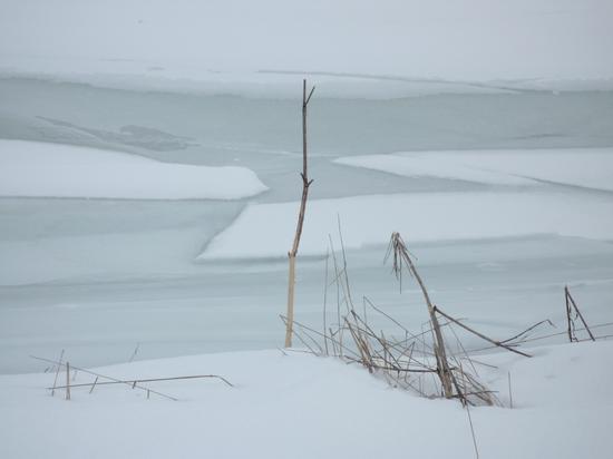 Recoaro Mille, inverno - Recoaro terme (2231 clic)