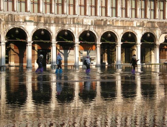 San Marco con acqua alta - Venezia (2295 clic)