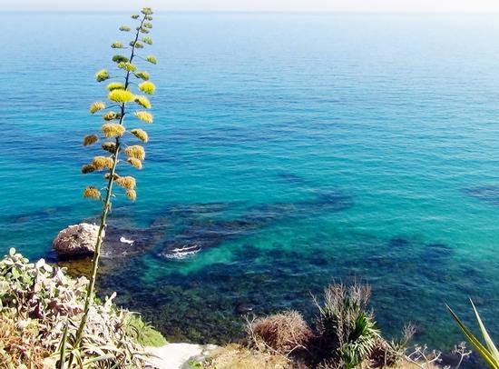 il mare di Sciacca (3431 clic)
