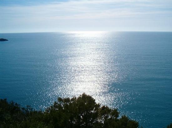 L' Orizzonte  - San nicola arcella (2729 clic)