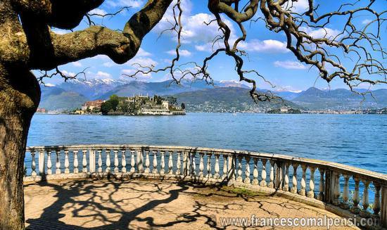 Lago di Stresa (4723 clic)