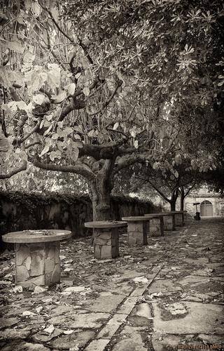 Convento Cappuccini - Francavilla di sicilia (2446 clic)