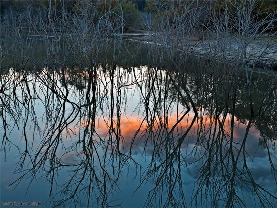 - Lago nicoletti (2592 clic)