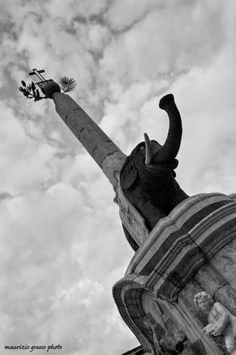 Piazza Duomo...lu liotru - Catania (2456 clic)