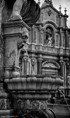 - Catania (2516 clic)