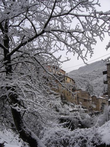 La neve a Rocchetta Nervina IM (2205 clic)