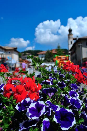 Piazza San Giovanni - Fondo (TN) (2490 clic)