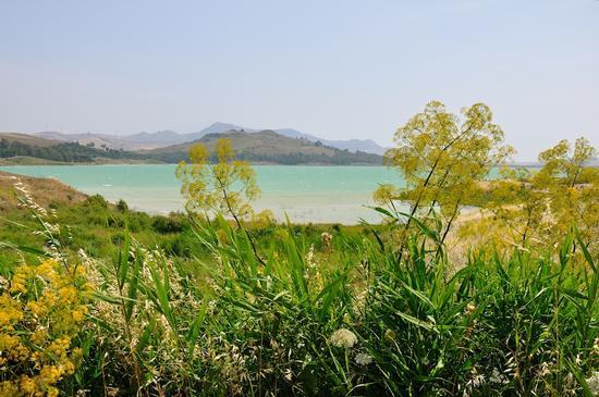 Lago - Aidone (2598 clic)