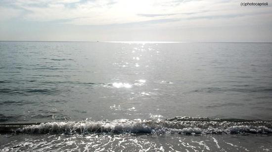 luglio - Scalea (1424 clic)