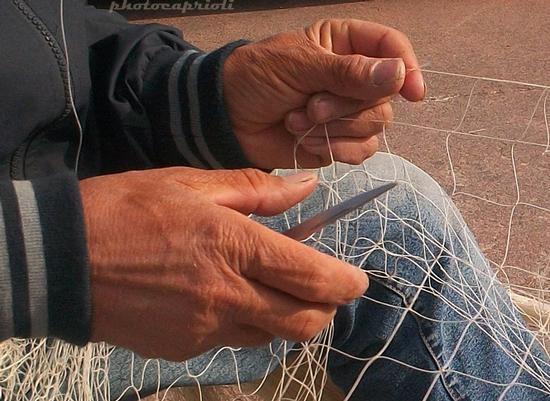 """contest """"le mani"""" 3 - MANO ARMATA … - - Scario (2172 clic)"""