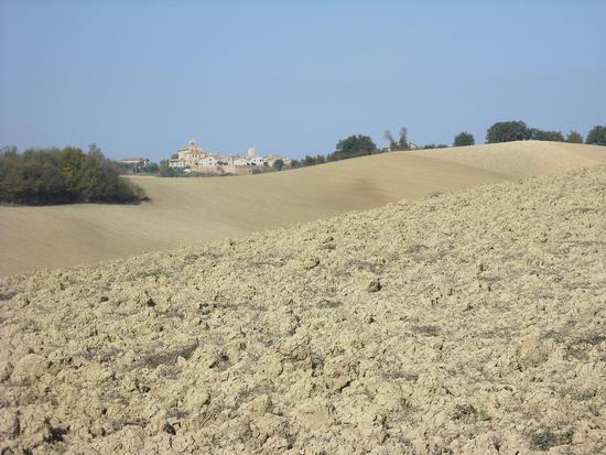 Cerasa-San Costanzo: le colline (1738 clic)