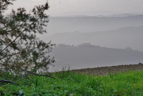 Cerasa-San Costanzo: gradazioni (1640 clic)