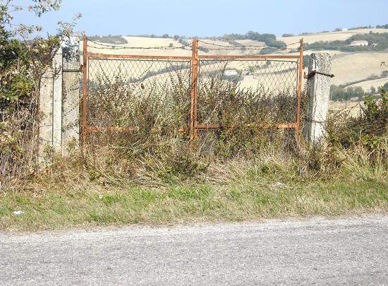 Cancello..di campagna - San costanzo (1600 clic)