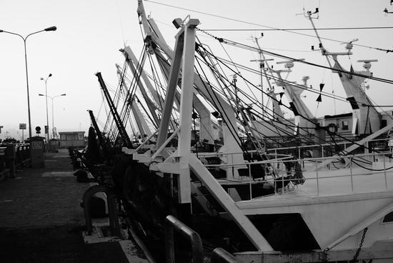 Porto canale di Fano (895 clic)
