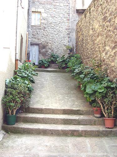 Castelsardo - Giardino in un vicolo (2083 clic)