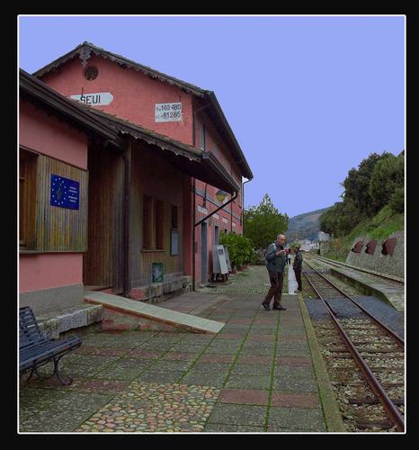 Ferrovie Complementari Sarde  - Seui (1710 clic)