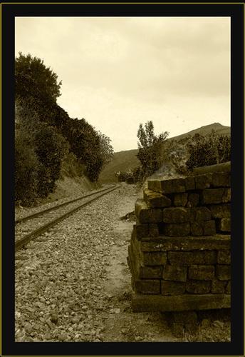 Ferrovie Complementari Sarde - Seui (1246 clic)