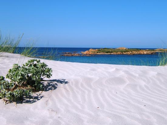 somewhere...in paradise - Capo comino (3326 clic)
