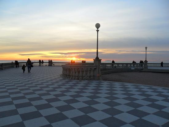 in terrazza - Livorno (2337 clic)