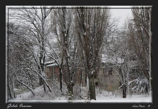 Gelido Inverno - San lazzaro di savena (1526 clic)