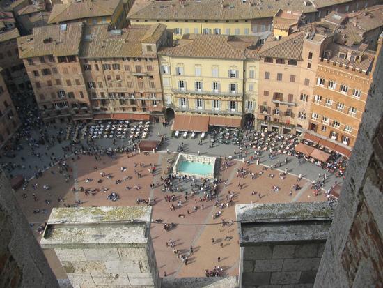 Piazza del palio dall'alto - Siena (2570 clic)