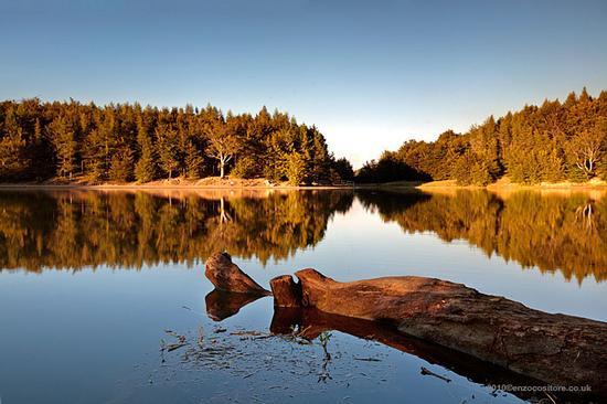 Lago del Ventasso - Ramiseto (4943 clic)