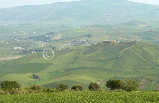 panorama monte belice - Marianopoli (3488 clic)