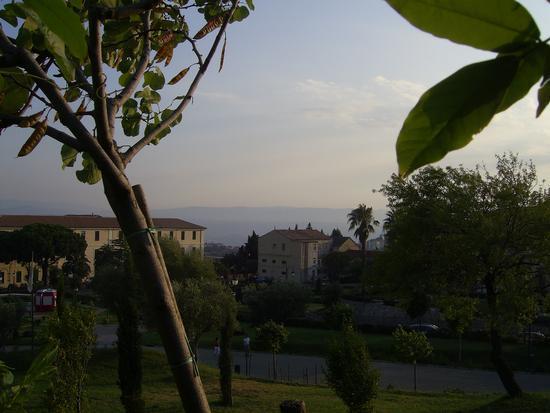 Parco delle Biodiversità Catanzaro (2040 clic)