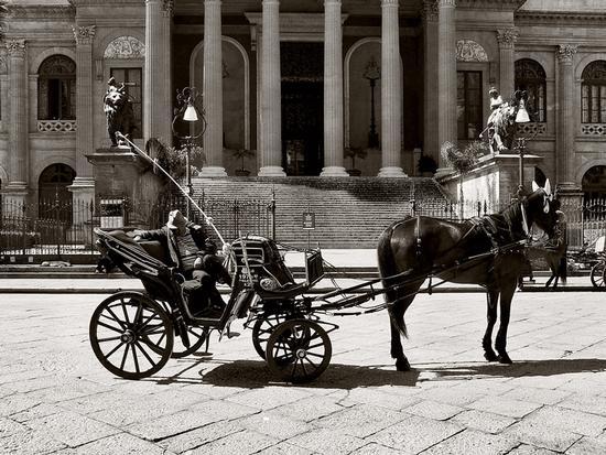 carrozza - Palermo (4420 clic)
