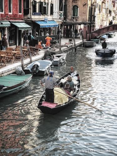 - Venezia (2823 clic)