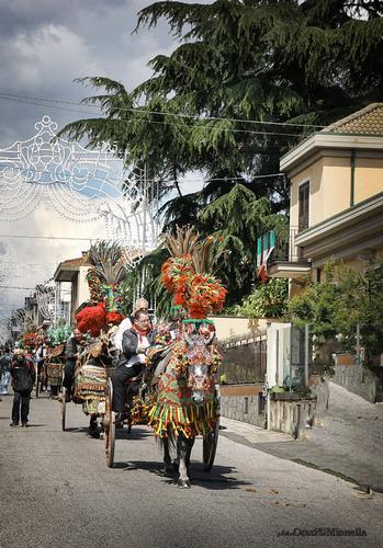 Festa di S.Alfio - Trecastagni (2634 clic)