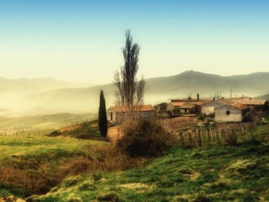 Paesaggio - Maniace (5228 clic)