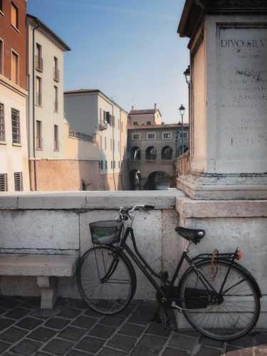Biciclette a Mantova (2848 clic)