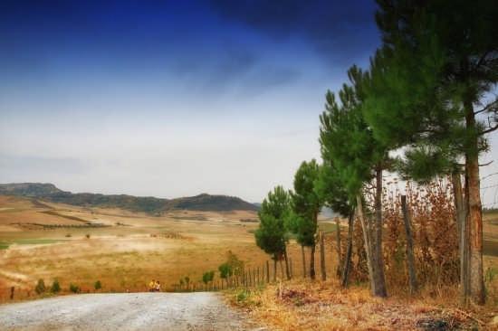 Paesaggio agreste - Raddusa (5460 clic)